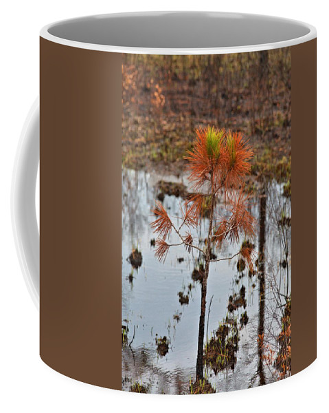 7976 Coffee Mug featuring the photograph Rebirth by Gordon Elwell