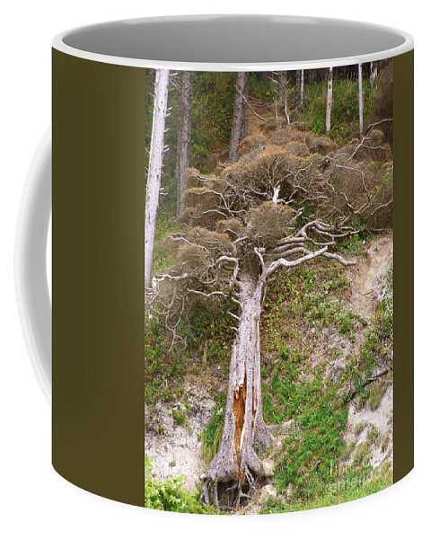 Dead Tree Coffee Mug featuring the photograph Rebirth On The Coast by LeLa Becker