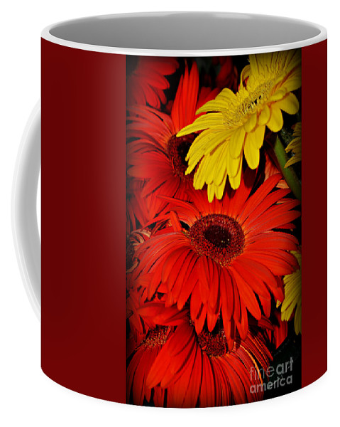 Gerbera Daisies Coffee Mug featuring the photograph Red And Yellow Glory - The Flowers Of Summer - Gerbera Daisies by Miriam Danar
