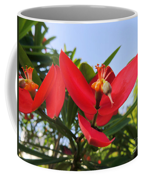 Red Bloom Coffee Mug featuring the photograph Red Bloom by Kristine Merc