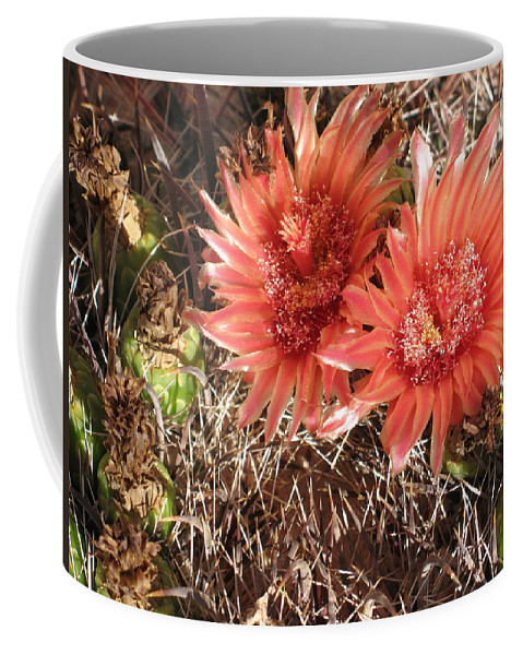 Cactus Coffee Mug featuring the photograph Red Cactus by Christiane Schulze Art And Photography