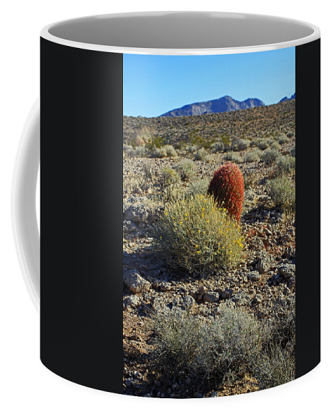 Nevada Coffee Mug featuring the photograph Red Cactus by Jennifer Robin