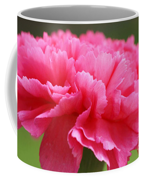 Carnation Coffee Mug featuring the photograph Red Carnation by Carol Lynch