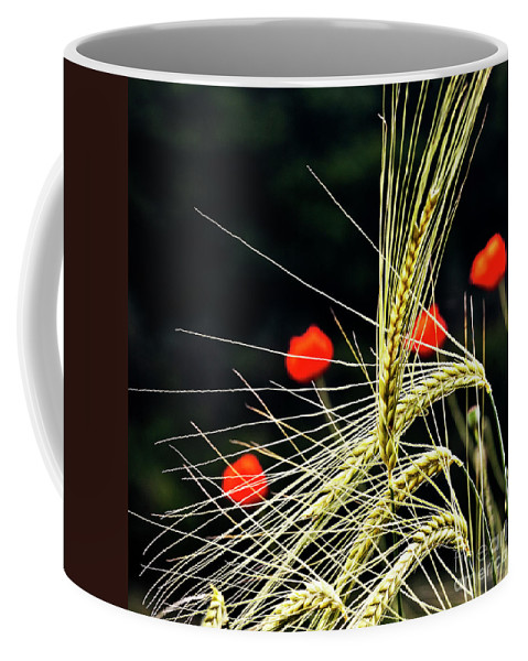 Red Corn Poppies Coffee Mug featuring the photograph Red Corn Poppies by Heiko Koehrer-Wagner