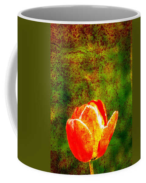 Flower Coffee Mug featuring the photograph Red Flower by Steve Ball
