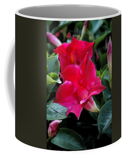 Flower Coffee Mug featuring the photograph Red Flowers by Kathy Sampson