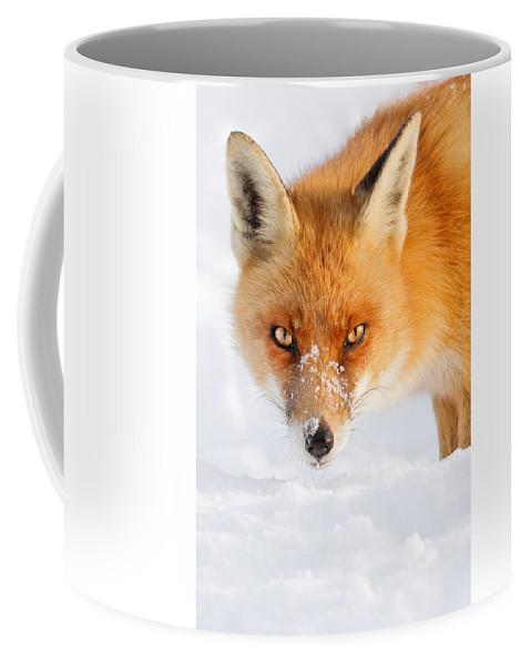 Red Fox Coffee Mug
