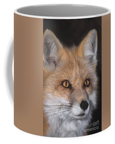 Red Fox Coffee Mug featuring the photograph Red Fox Portrait Wildlife Rescue by Dave Welling