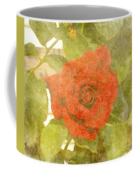 Summer Coffee Mug featuring the photograph Red Hot Rose by Alys Caviness-Gober