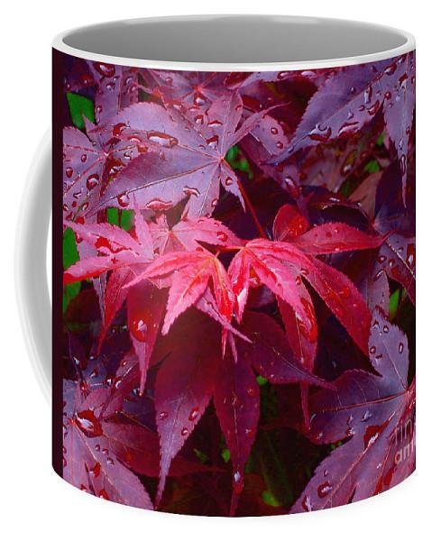 Rain Coffee Mug featuring the photograph Red Maple After Rain by Ann Horn