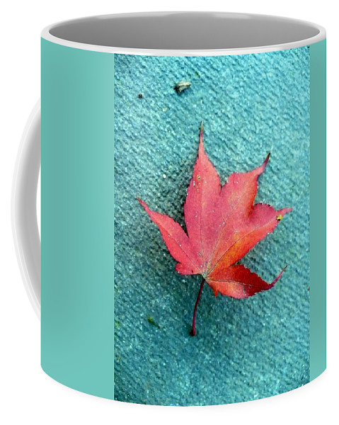 Red Coffee Mug featuring the photograph Red Maple Blue by Nicki Bennett