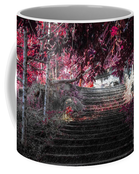 Nature Coffee Mug featuring the photograph red by Michelle Meenawong