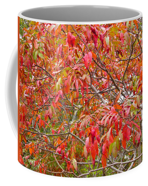 Red Coffee Mug featuring the photograph Red by Nick Kirby