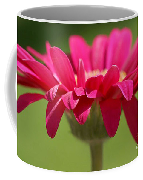 Pink Coffee Mug featuring the photograph Red Pink Daisy by Carol Lynch