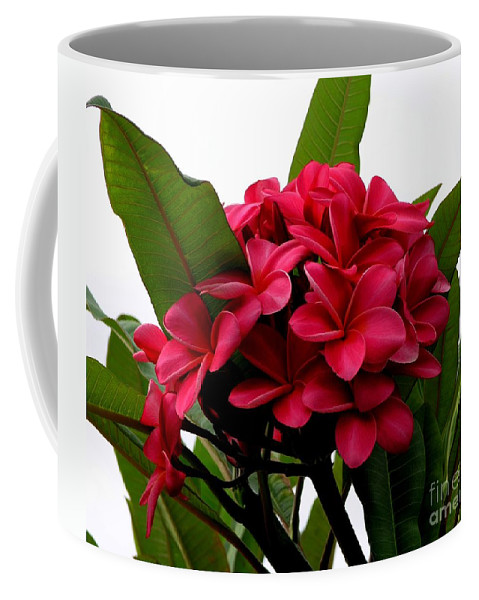 Plumeria Coffee Mug featuring the photograph Red Plumeria by Mary Deal
