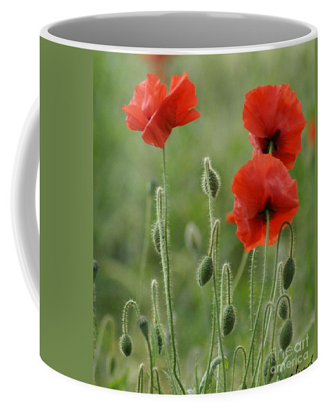 Poppies Coffee Mug featuring the photograph Red Red Poppies 1 by Carol Lynch