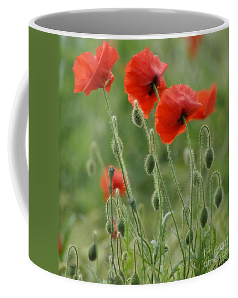 Poppies Coffee Mug featuring the photograph Red Red Poppies 2 by Carol Lynch