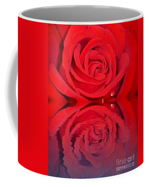Red Rose Reflects Coffee Mug featuring the photograph Red Rose Reflects by Susan Garren