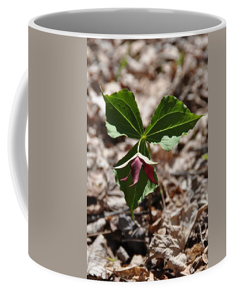 Flower Coffee Mug featuring the photograph Red Trillium by Valerie Kirkwood