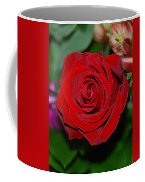 Red Rose Coffee Mug featuring the photograph Red Velvet Rose by Connie Fox