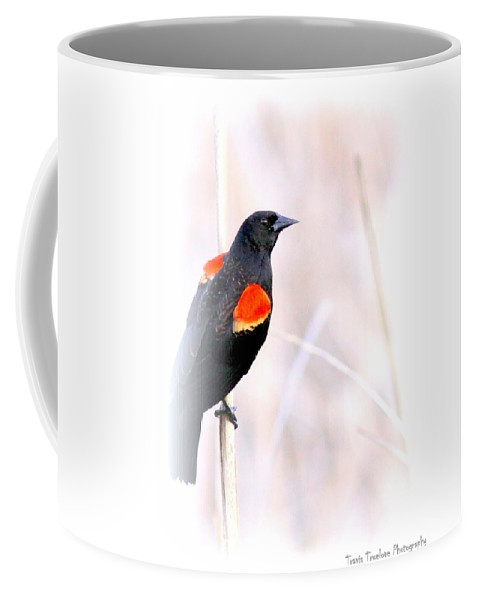 Hope Mills Nc Coffee Mug featuring the photograph Red-winged Blackbird - Colors by Travis Truelove