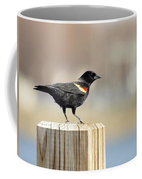 Red Winged Blackbird Coffee Mug featuring the photograph Red Winged Blackbird by Thomas Young