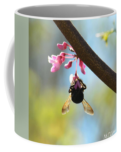 Redbud And The Bumble Coffee Mug featuring the photograph Redbud And The Bumble by Maria Urso