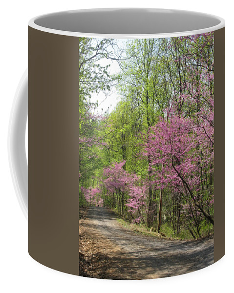 Redbud Coffee Mug featuring the photograph Redbud Road by Laura Corebello