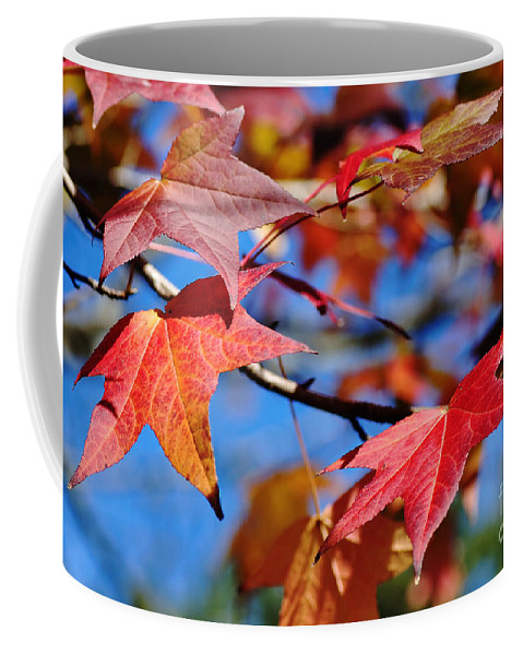 Photography Coffee Mug featuring the photograph Reds Of Autumn by Kaye Menner