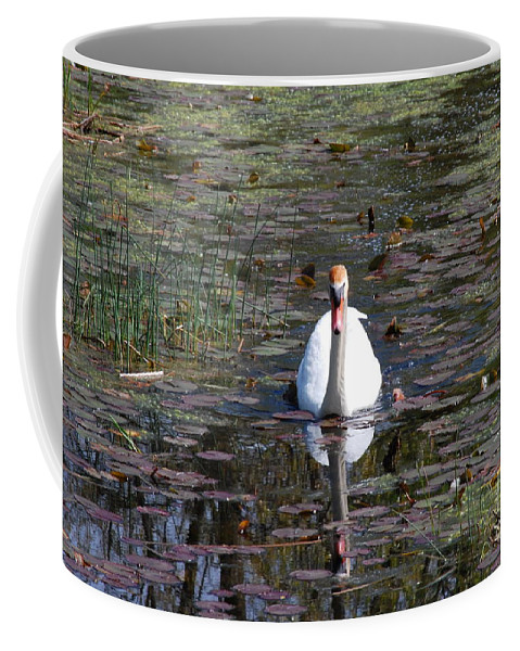 Nature Coffee Mug featuring the photograph Reflected Beauty by Lynn Rae