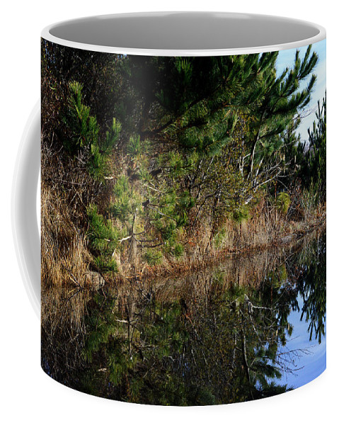 At The Beach Coffee Mug featuring the photograph Reflecting Puddle At The Beach by Bill Swartwout Fine Art Photography
