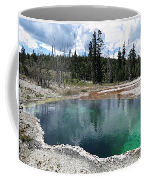 Reflection Coffee Mug featuring the photograph Reflection by Laurel Powell