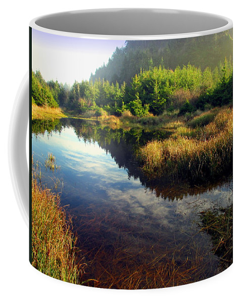 Reflections Coffee Mug featuring the photograph Reflections In The Pond by Joyce Dickens