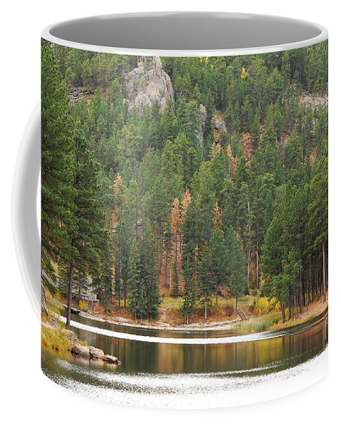 Trees Coffee Mug featuring the photograph Reflections by Mary Carol Story