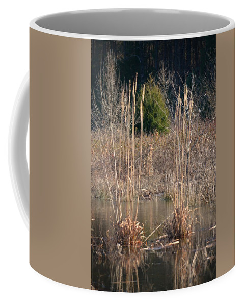 Reflections Of Winter Past 2014 Coffee Mug featuring the photograph Reflections Of Winter Past 2014 by Maria Urso
