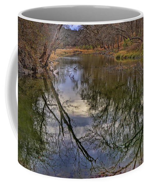 Trees Winter Coffee Mug featuring the photograph Reflections On A Warm Winter Day by Gary Holmes