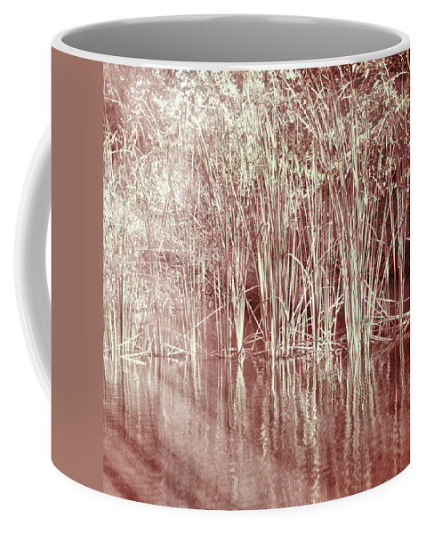 Lake Trafford Coffee Mug featuring the photograph Reflections On Lake Trafford by Carolyn Marshall