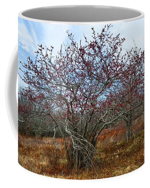 Nature Coffee Mug featuring the photograph Resilient by Judith Boyce