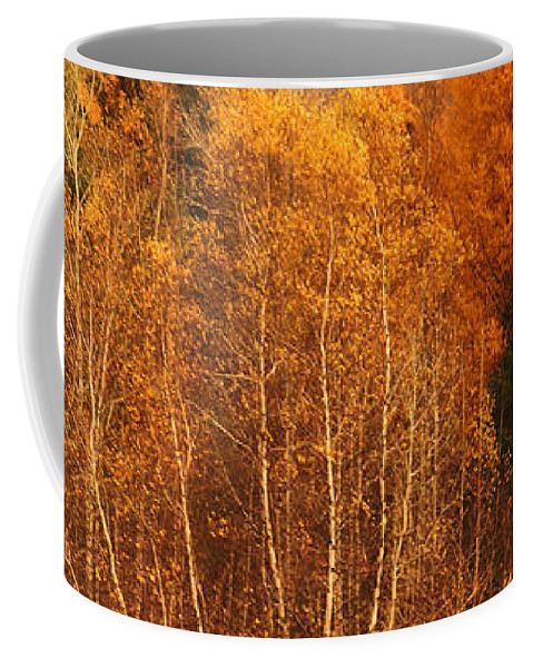 Autumn Coffee Mug featuring the photograph Restes D'automne by Aimelle