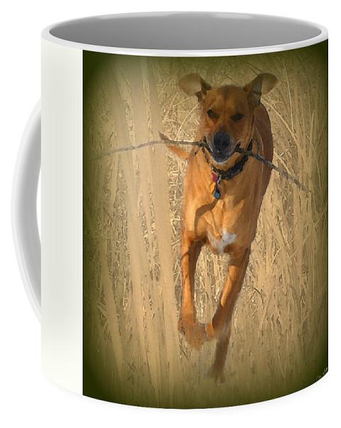 Rhodesian Ridgeback Coffee Mug featuring the photograph Rhodesian Ridgeback by Mim White