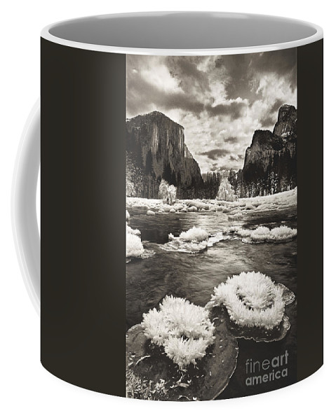 North America Coffee Mug featuring the photograph Rime Ice On The Merced In Black And White by Dave Welling