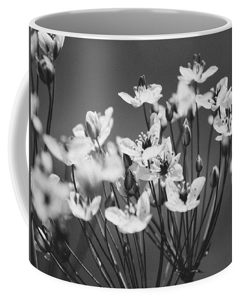 Beauty Coffee Mug featuring the photograph Rising Up Bw by Pati Photography