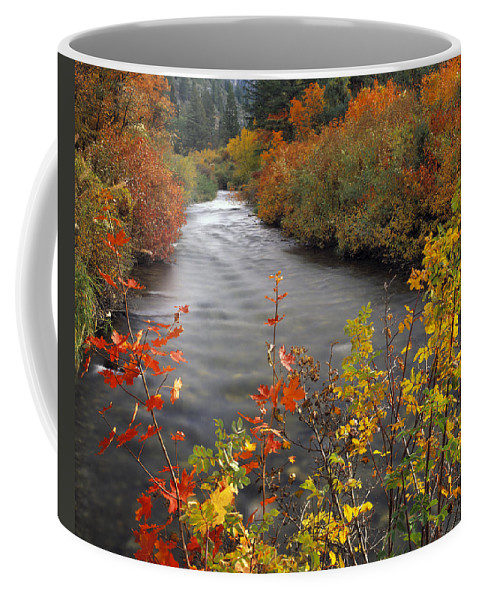 Idaho Scenics Coffee Mug featuring the photograph River Color by Leland D Howard