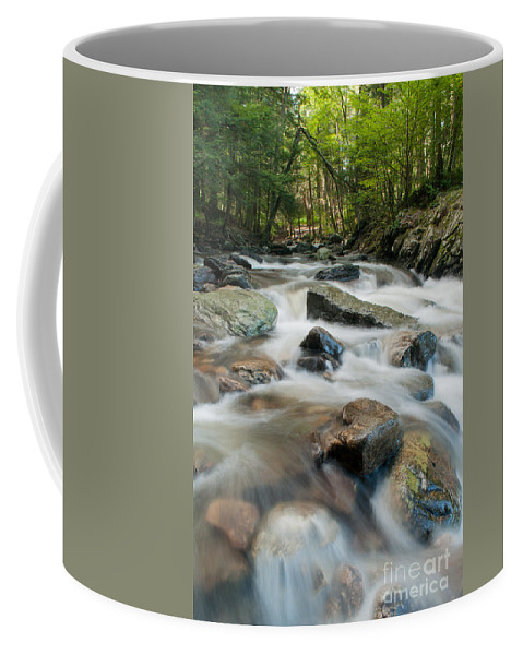 Connecticut Coffee Mug featuring the photograph River - Rapids Above Kent Falls by JG Coleman