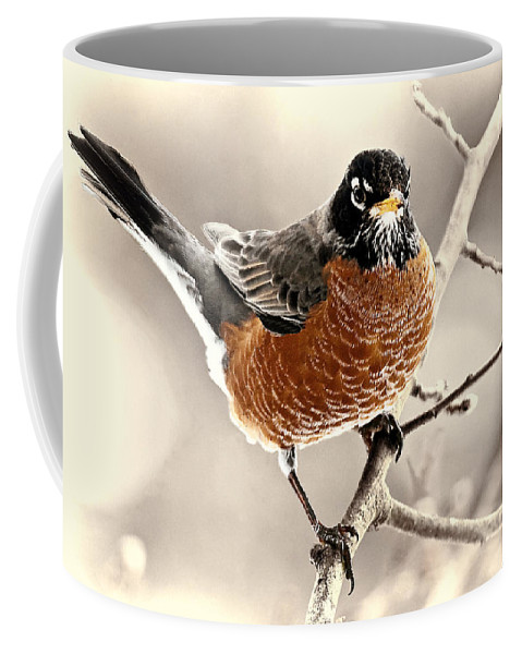American Coffee Mug featuring the photograph Robin by Marcia Colelli