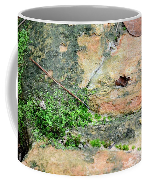 Rock Abstract 1 Coffee Mug featuring the photograph Rock Abstract 1 by Maria Urso