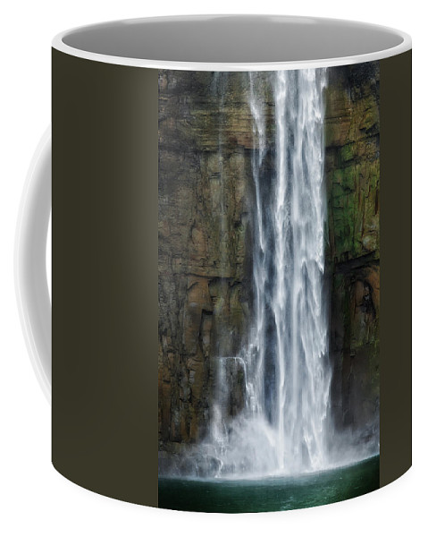 Taughannock Falls Coffee Mug featuring the photograph Rock Bottom by Bill Wakeley