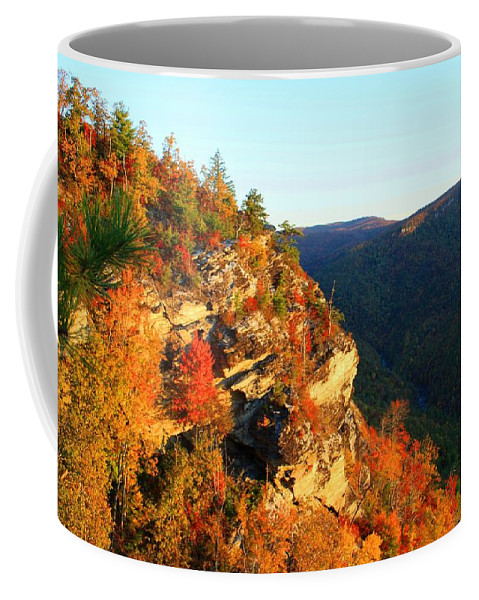 Mountain Coffee Mug featuring the photograph Rock Face by Kathryn Meyer