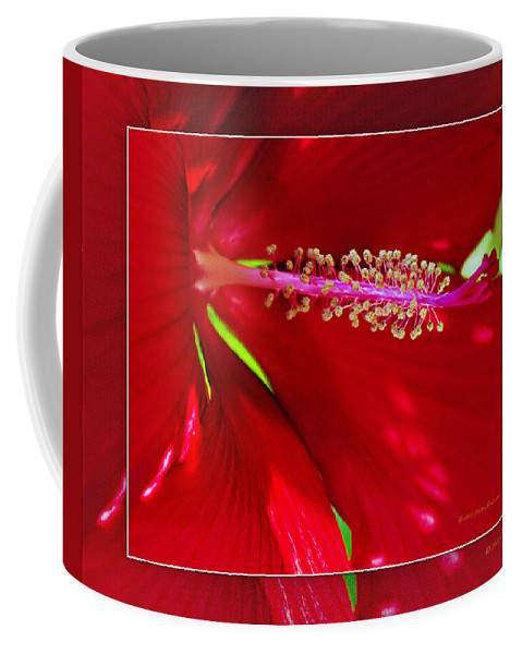 Rolling Hills Wildlife Adventure  Coffee Mug featuring the photograph Rolling Hills 6 by Walter Herrit