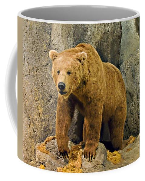 Rolling Hills Wildlife Adventure Coffee Mug featuring the photograph Rolling Hills Wildlife Adventure 1 by Walter Herrit